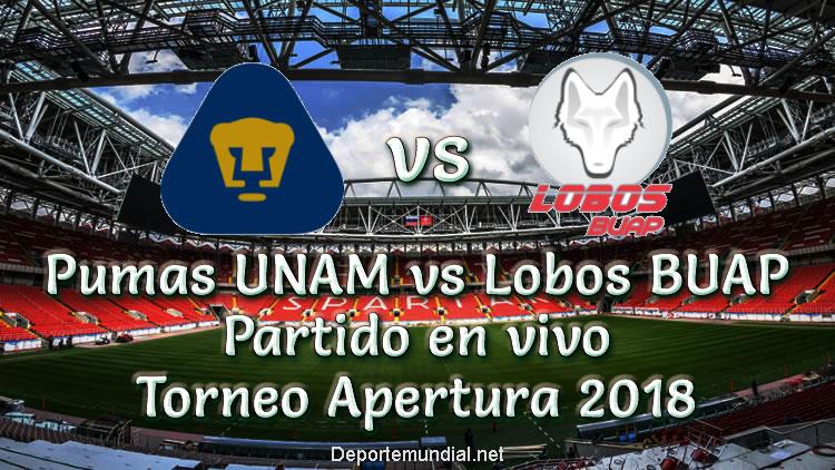 Pumas UNAM vs Lobos BUAP en VIVO Torneo Apertura 2018