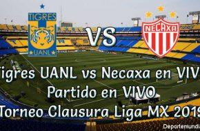 Tigres UANL vs Necaxa en VIVO Torneo Clausura liga MX 2019